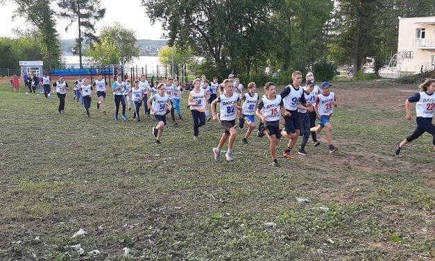 Муниципальный этап летнего фестиваля Всероссийского физкультурно-спортивного комплекса «ГТО» в Сысертском городском округе